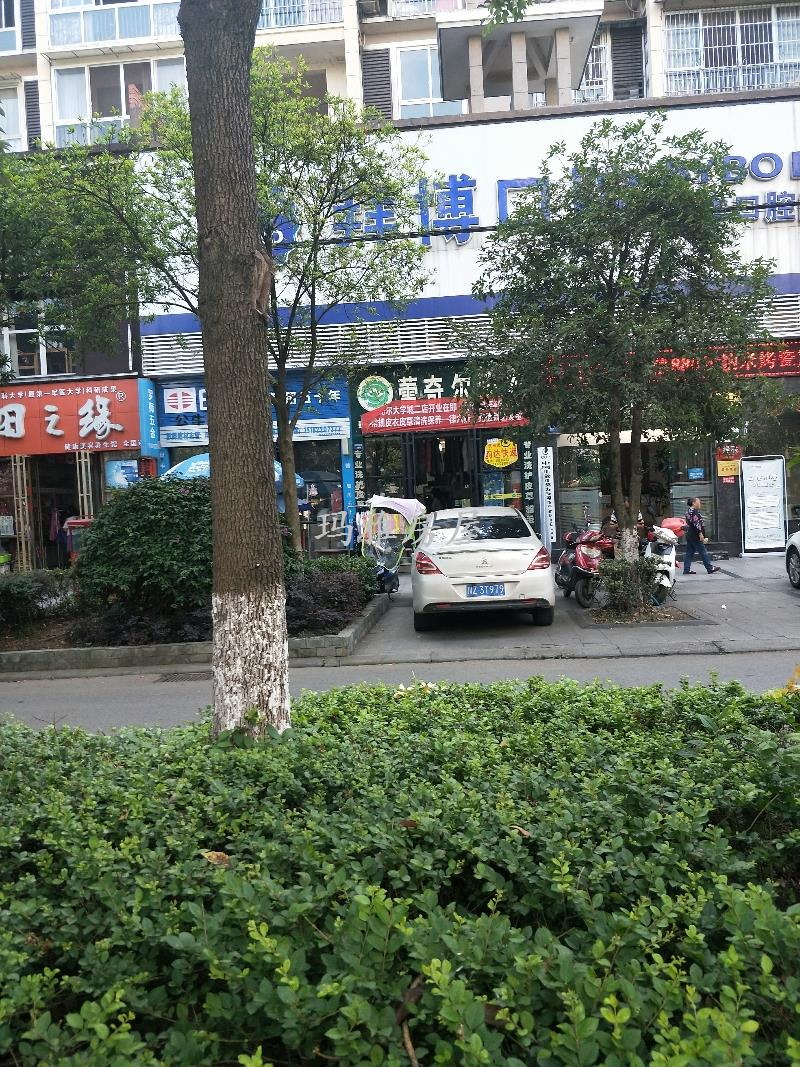 永达—蓝湾枫景